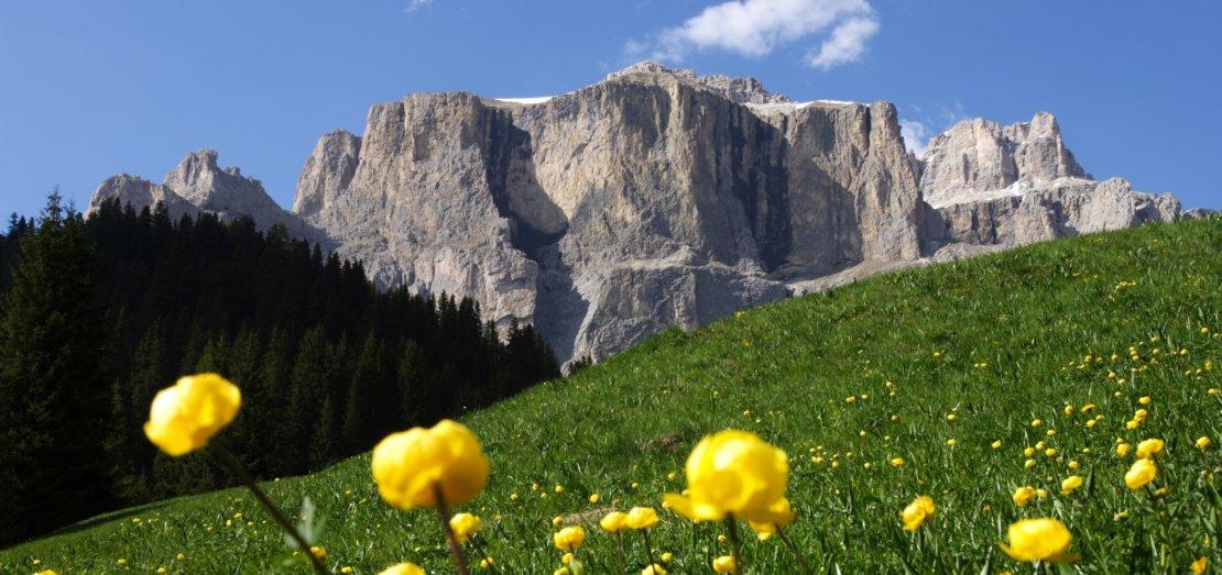 sporting-travel-val-di-fassa-trekking-wakacje-dolomity