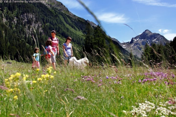 sporting-travel-val-di-fiemme-trekking-wakacje-dolomity